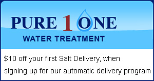 Salt Delivery Coupon - Orlando